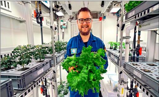 图片来源:美联社 据悉,首批收成的蔬菜包括3.6公斤生菜、18根小黄瓜与70根小红萝卜。 该研究由德国航空太空中心(DLR)负责。项目工程师及园艺师扎贝尔(Paul Zabel)表示,他每日平均会花3至4小时照料温室内的蔬菜。科学家希望在5月前,每周能收成4到5公斤蔬果。 项目主管舒伯特(Daniel Schubert)称,他们在过去数周了解到更多关于自给自足培植的知识,南极是他们研究的理想试验地。南极种植计划的目的是让航天员将来在火星或月球种植出更多类型的蔬菜。(编辑:LED网 James)