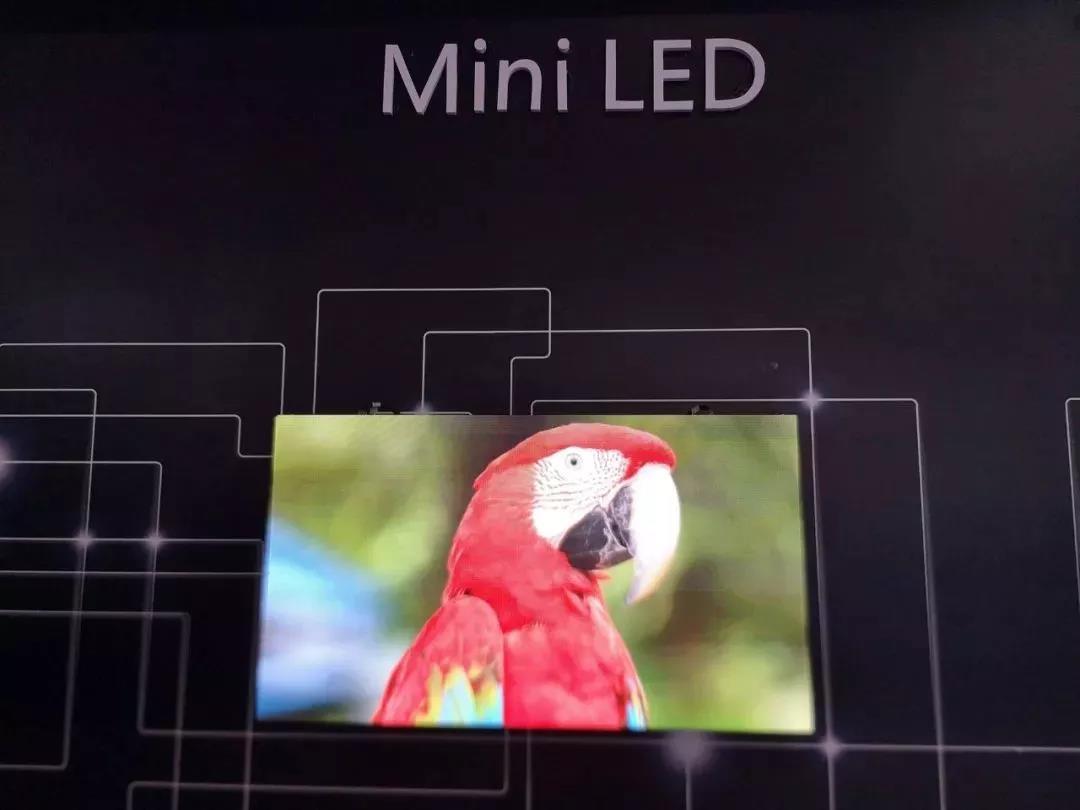 国星光电:Mini 显示与背光齐飞,REESTAR高端品牌并进