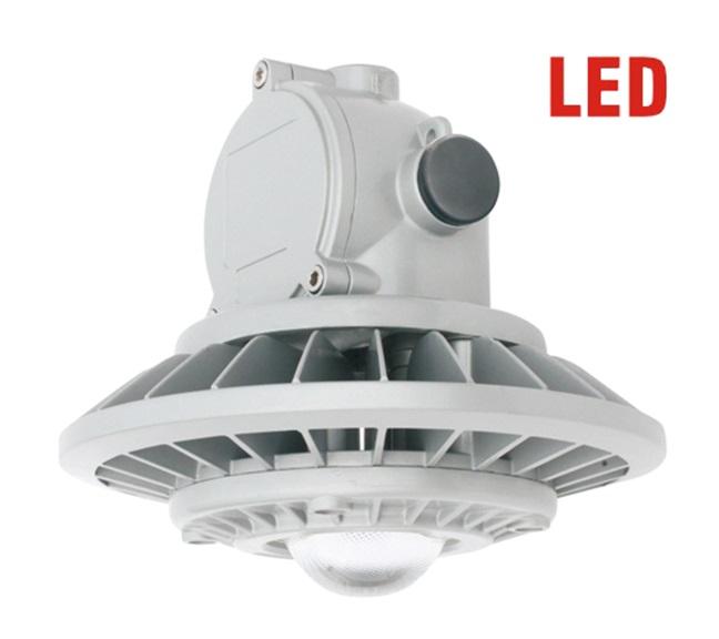 DGXDGD9028P LED防爆灯(杆式)