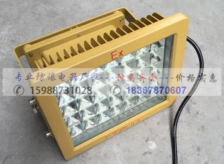 LED防爆灯  LED防爆灯厂家15988731028