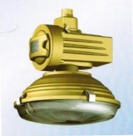森本厂家SBD1105-YQL120免维护节能防爆灯
