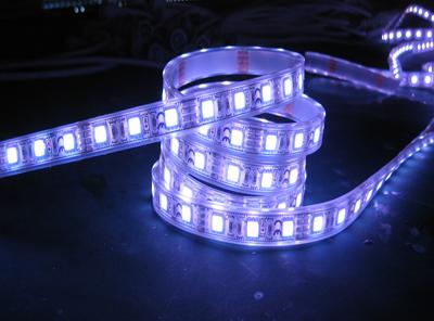 LED灯带/LED柔性霓虹灯带高亮防水/霓虹灯管/高压灯条