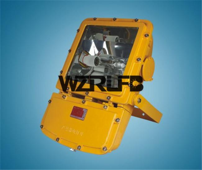 SW8110防爆泛光灯